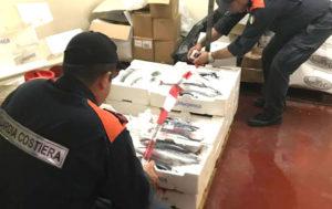 Sequestrati 45 esemplari di tonno rosso sotto misura, multato il commerciante