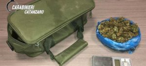 Amaroni – Marijuana nascosta tra le conserve, 26enne ai domiciliari