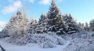 La Calabria nella morsa del gelo, non nevica più ma le temperature restano rigide
