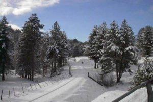 La Calabria nella morsa del gelo, neve e temperature in picchiata