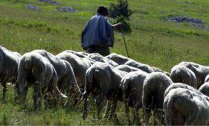 Messaggio ai pastori Sardi