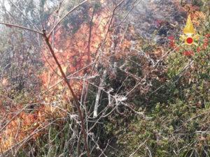 Vasto incendio di arbusti e macchia mediterranea a Olivadi