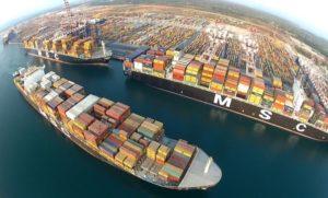 Sequestrati al porto di Gioia Tauro 932 kg di cocaina in un container che trasportava cozze