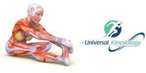 Stretching: perché è importante eseguirlo?