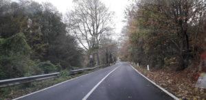 Anas: prosegue la  manutenzione straordinaria lungo le strade di rientro in Provincia di Catanzaro