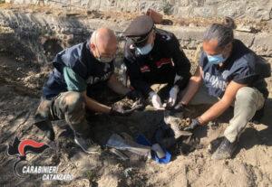Rinvenute munizioni in un terreno demaniale, sequestrate