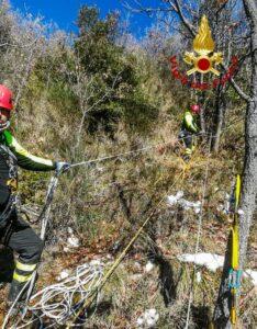 Cane scivola in un dirupo, soccorso e salvato dai vigili del fuoco