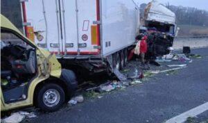 Camion che trasportava cani e gatti si ribalta, 3 persone morte