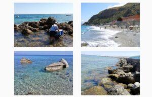Online il report annuale Arpacal sulle microalghe potenzialmente tossiche sulle coste calabresi