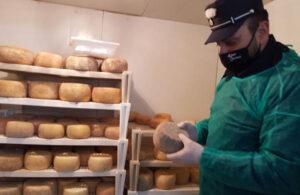Sequestrati dai carabinieri forestali 350 chili prodotti caseari