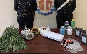 Aveva un laboratorio in casa per produrre e vendere marijuana, 25enne arrestato