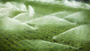 Il Consorzio Ionio Catanzarese ha aperto in anticipo gli impianti di irrigazione