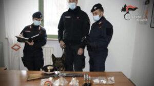 Simbario – Armi ed esplosivi nascosti in una legnaia, 37enne arrestato