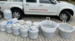 Sequestrata dalla Guardia Costiera mezza tonnellata di novellame di sarda