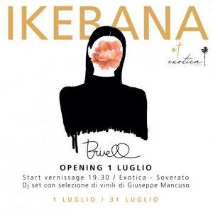 Ikebana di Briell: la mostra all'Exotica – The Lounge Club di Soverato