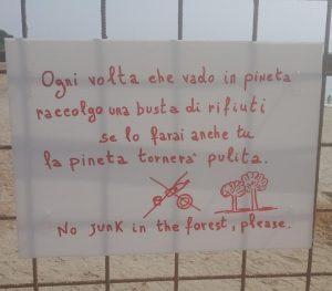 Rifiuti in pineta a Squillace, cittadini indignati contro gli incivili