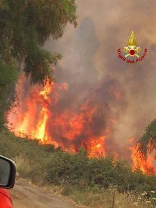 Vasto incendio di arbusti e macchia mediterranea, intervento dei vigili del fuoco