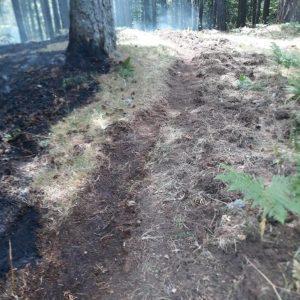 """""""Calabria Verde"""", l'importanza di realizzare fasce parafuoco prima e durante gli incendi"""