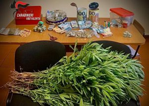 Scoperte piante di marijuana e oltre 5 mila euro nascosti, 36enne arrestato