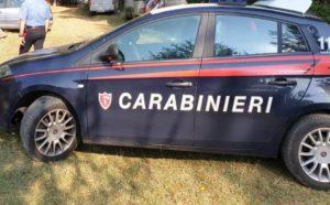 Interrotto dai carabinieri un rave party a Serra San Bruno con decine di giovani